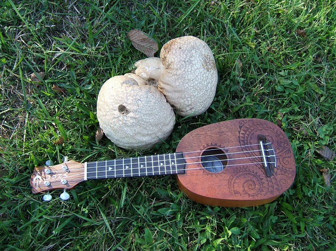 Large double mushroom with soprano 'pineapple' ukulele