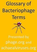 Bacteriophage first-issue cover